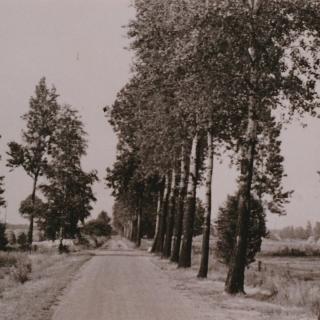 026-Een oud plaatje van 't Ven in Bakel.