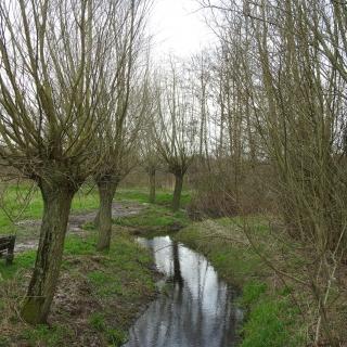 """027-Het """"Wim Vloetpad"""". Wim Vloet was mede-oprichter van het IVN in Bakel en Milheeze. Na zijn te vroege overlijden is dit natuurpad, waar hij het initiatief voor nam, naar hem genoemd."""