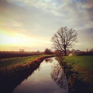 036-Zomaar een mooi plaatje van prachtige natuur die in onze dorpen te vinden is.