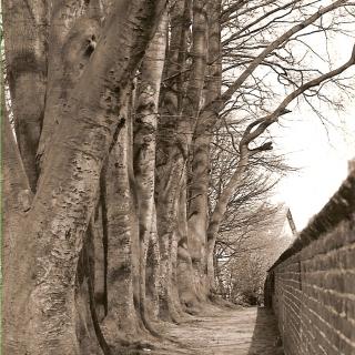 060-Kerkepad, later hernoemd naar Gildepad, in Bakel achter het kerkhof.