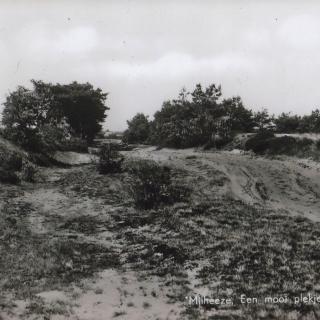 065-Oude doorgaande weg van Milheeze naar Venray. Iedereen, ook uit omliggende dorpen, moest via deze enige begaanbare route naar Venray.