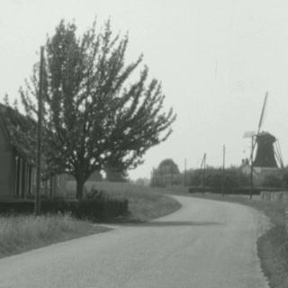 066-Milheeze, zicht op de molen vanaf de Schutsboom.