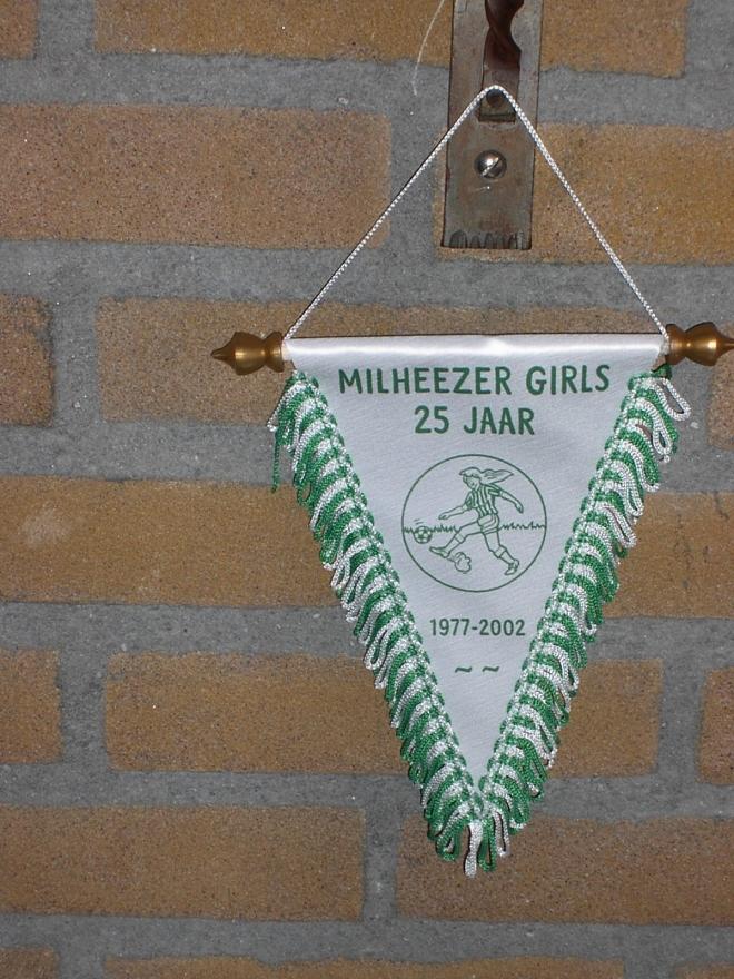 mb-75-077  https://www.heemkundekringbakelenmilheeze.nl/files/images/milheezer-boys-75/mb-75-077_128.jpg
